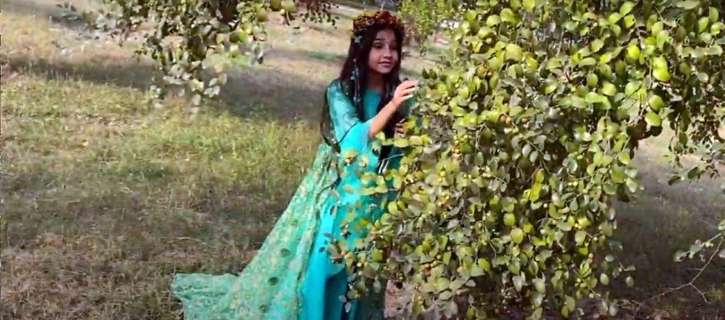 В Індії зняли «Лісову пісню» мовою гінді, а в Німеччині – відео про берлінський період Лесі Українки